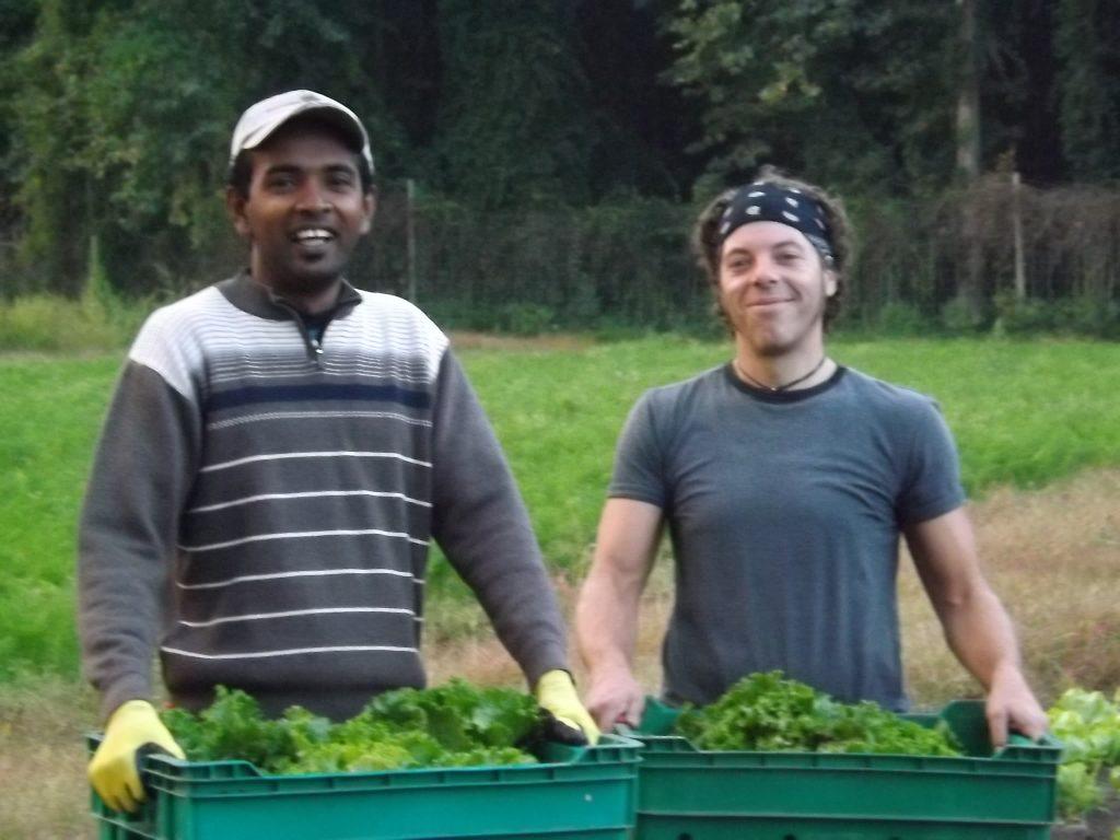 Our fabulous farm crew!